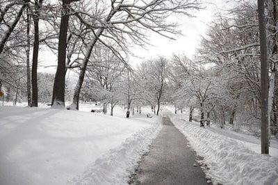 paisajes de nieve Parque de Toronto en invierno