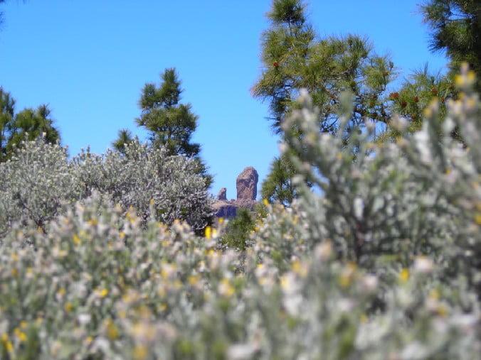 Parque del Nublo de Gran Canaria