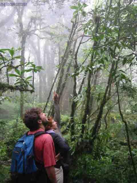 parque-nacional-montecristo-el-salvador