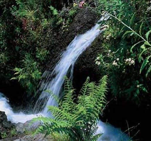 Parque Natural de Las Nieves