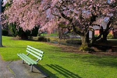 Parque Westmorland, en USA.