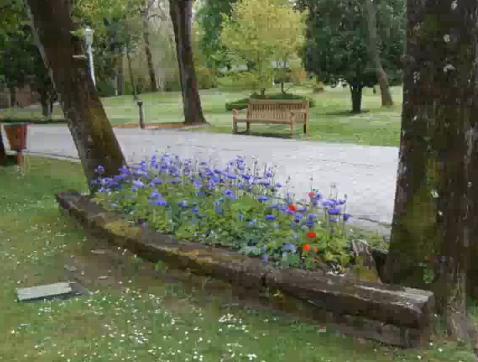 parques y naturaleza el parque de Aiete