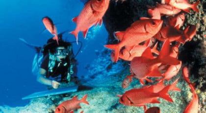 practicar submarinismo en Formentera