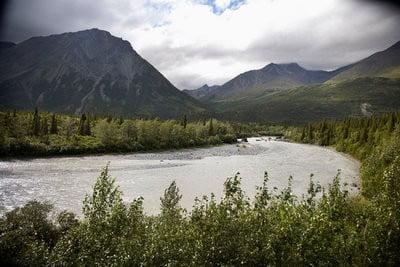Proximidad al Parque Nacional Denali