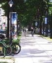 Recorrido en Bicicleta por Viena