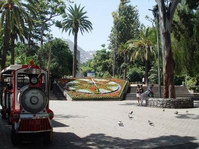 Reloj de Flores de Santa Cruz de Tenerife