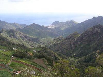 Reserva El Brezal, Gran Canaria