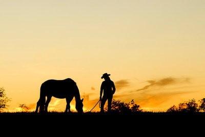 Rutas a caballo descansando