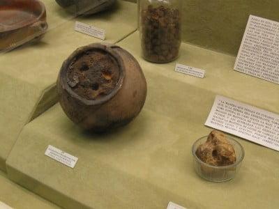 Salas del Museo Canario