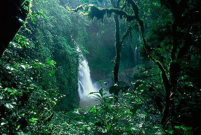 selva-amazonica1-catarata