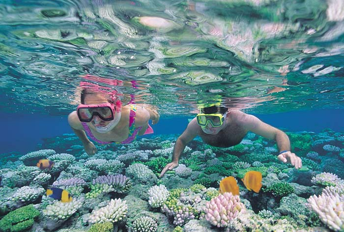Snorkell en Cairns