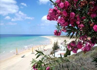 Temperaturas de Fuerteventura