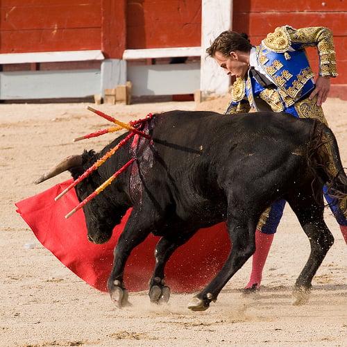 Toros en Almería