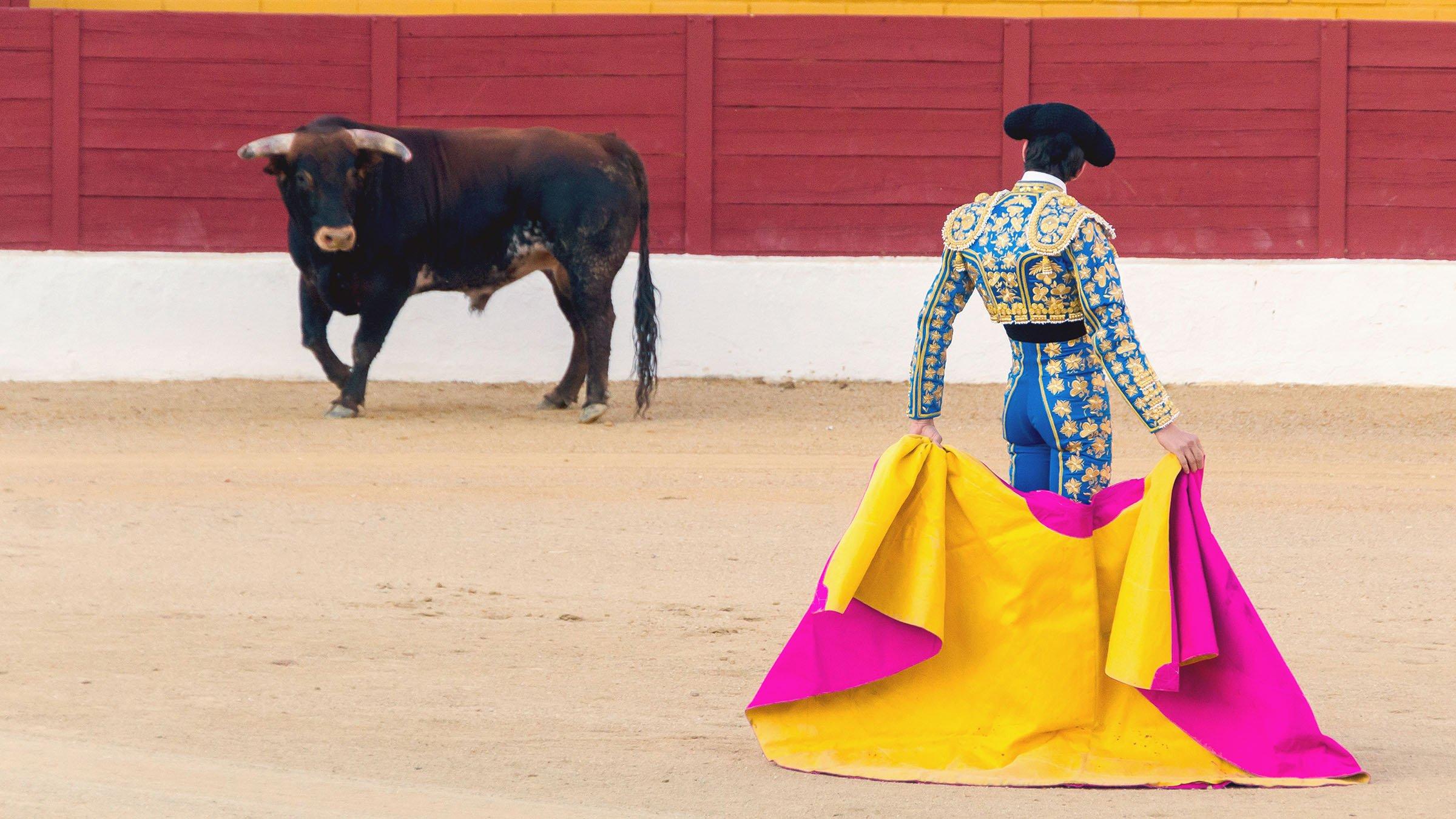 Bull and bullfighter in Spain