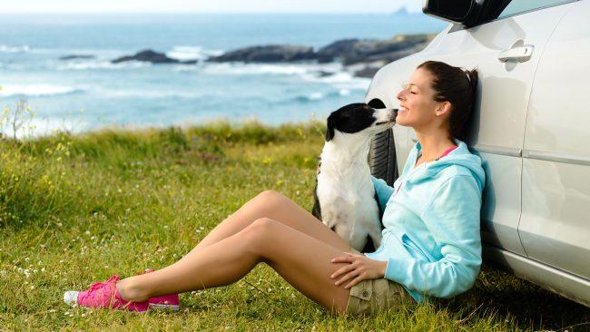 Trámites para viajar con mascotas a Argentina