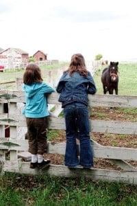 Turismo rural con niños admirando