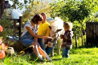 Turismo rural con niños con animales