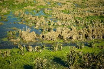 Turismo rural en Valencia agricultura