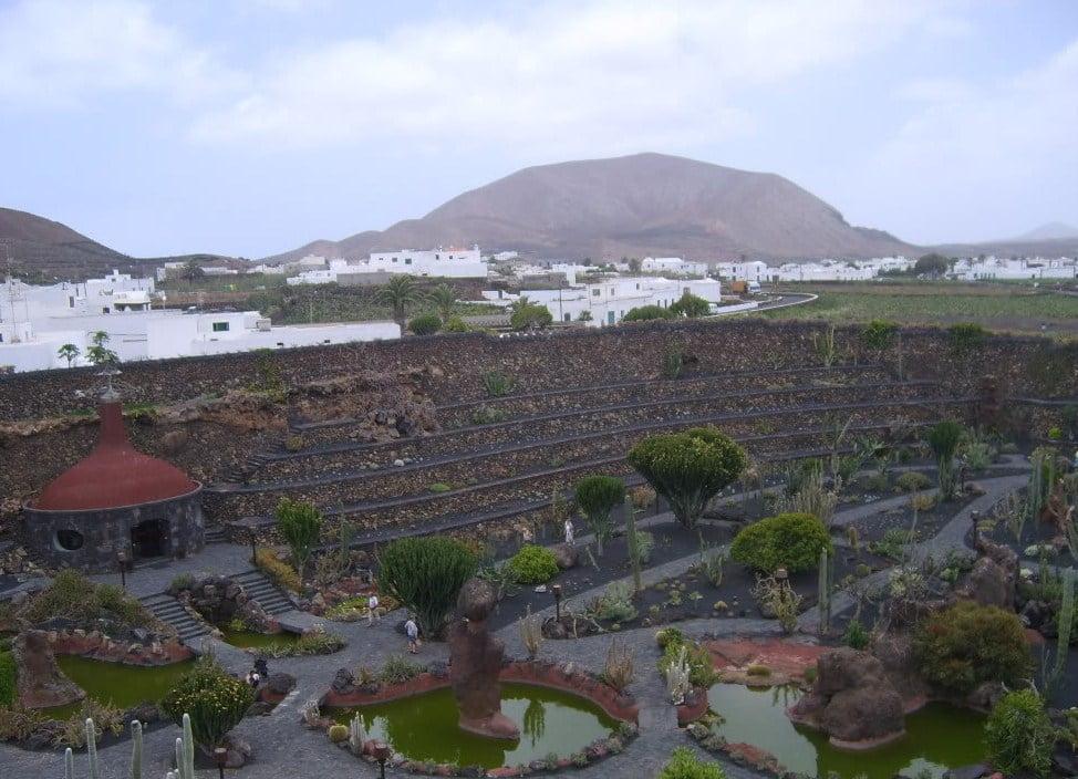 Vista general del Jardín de Cactus