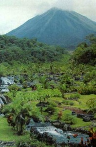 Foto del Bosque Nuboso de Monteverde