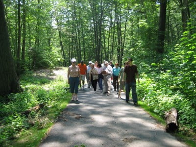 walk-talk-tours