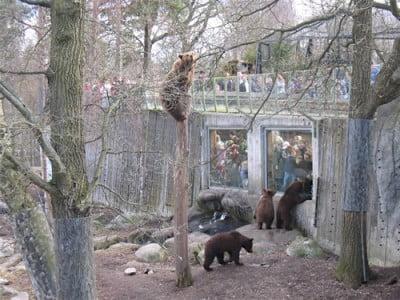Zoo de Skansen