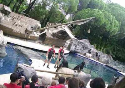 Parque zoológico de Madrid